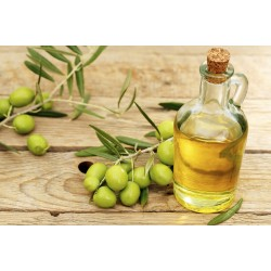 Olive oil slows down Alzheimer's